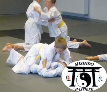 Ecole d'arts martiaux Mishido